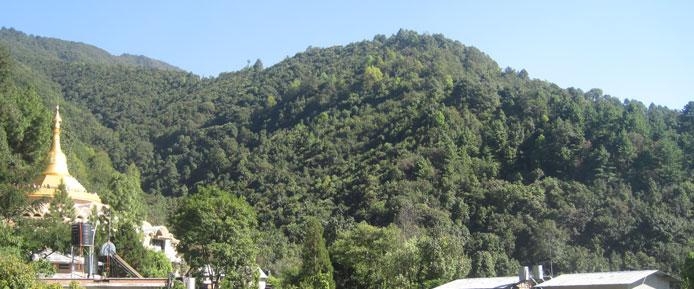 Dhamma Shringa Landscape