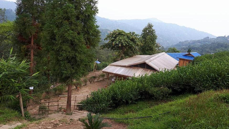 Meditation Hall - Dhamma Suriyo